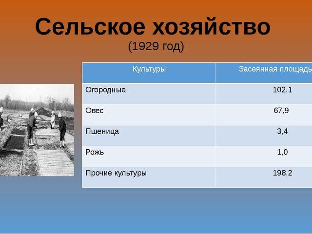 Сельское хозяйство (1929 год) Культуры Засеянная площадь(га) Огородные 102,1...