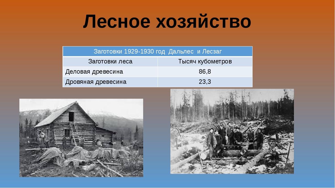 Лесное хозяйство Заготовки 1929-1930 годДальлесиЛесзаг Заготовки леса Тысяч к...