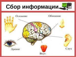 Сбор информации © Фокина Лидия Петровна © Фокина Лидия Петровна