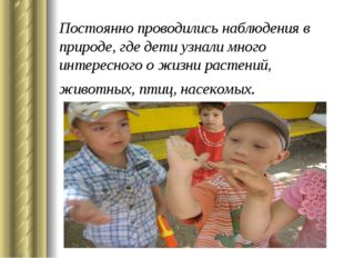 Постоянно проводились наблюдения в природе, где дети узнали много интересного