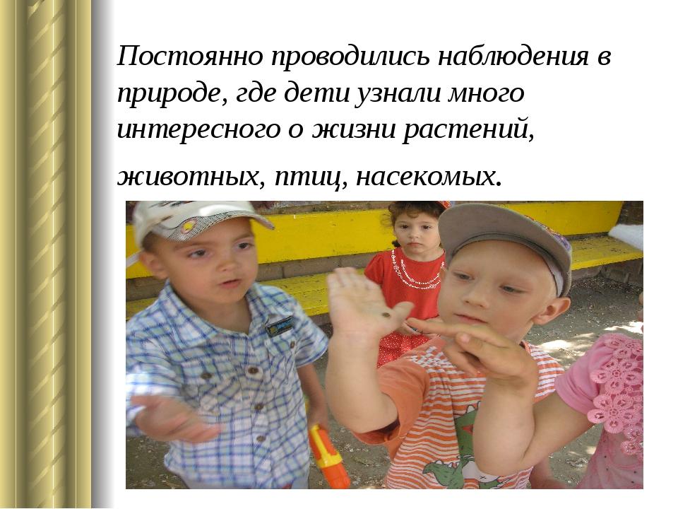 Постоянно проводились наблюдения в природе, где дети узнали много интересного...