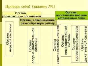 Проверь себя! (задание №1) Органы, совершающие разнообразную работу Органы, в