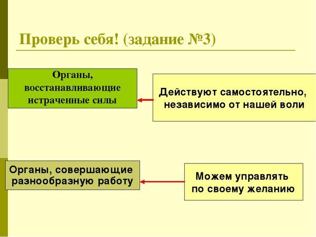 Проверь себя! (задание №3) Органы, восстанавливающие истраченные силы Органы,...