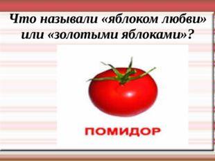 Что называли «яблоком любви» или «золотыми яблоками»?
