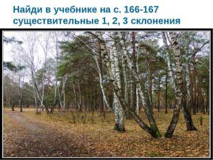 Найди в учебнике на с. 166-167 существительные 1, 2, 3 склонения