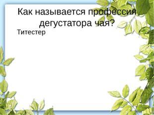 Как называется профессия дегустатора чая? Титестер