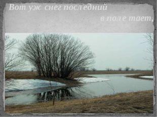 Вот уж снег последний в поле тает,