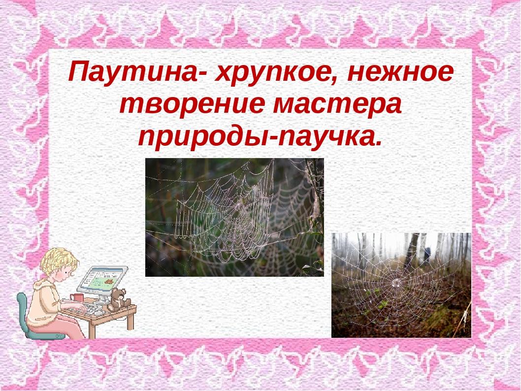 Паутина- хрупкое, нежное творение мастера природы-паучка.