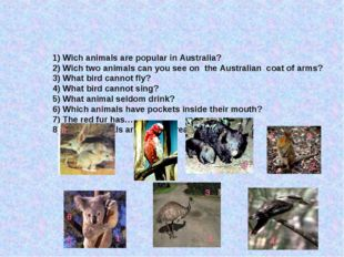 1) Wich animals are popular in Australia? 2) Wich two animals can you see on