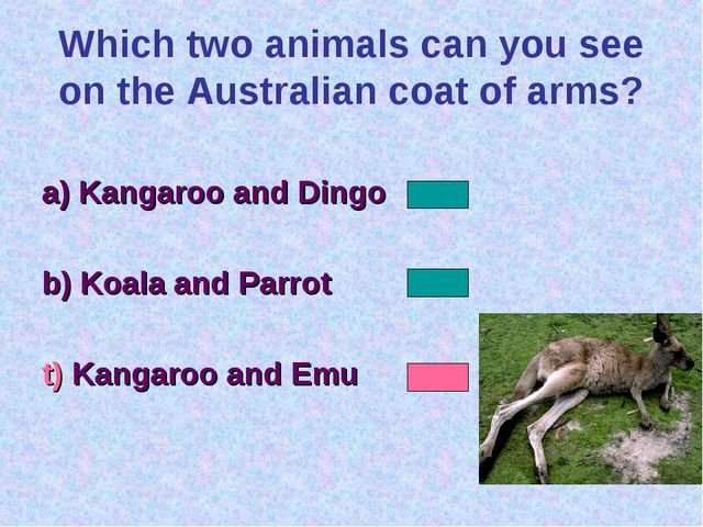 Which two animals can you see on the Australian coat of arms? a) Kangaroo and...