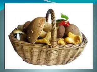 Тема урока: «С лукошком за грибами»