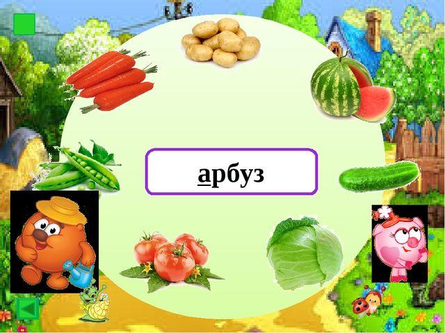 Картоф картофель Картоф арбуз