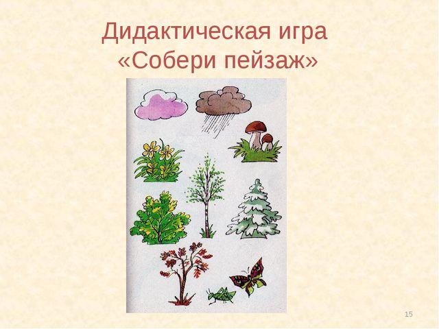* Дидактическая игра «Собери пейзаж»
