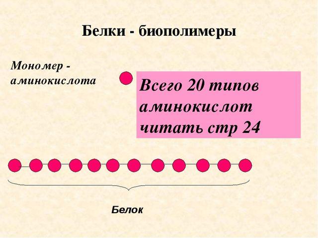 Белки - биополимеры Мономер - аминокислота Всего 20 типов аминокислот читать...
