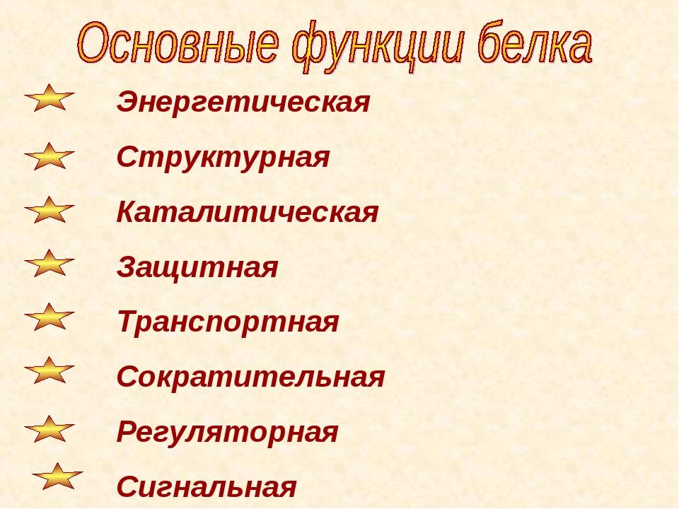 Энергетическая Структурная Каталитическая Защитная Транспортная Сократительн...