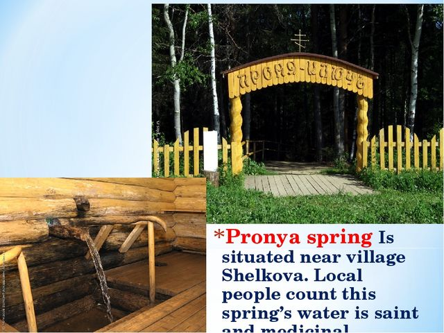 Pronya spring Is situated near village Shelkova. Local people count this spri...