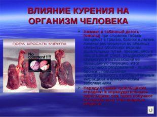 ВЛИЯНИЕ КУРЕНИЯ НА ОРГАНИЗМ ЧЕЛОВЕКА Аммиак и табачный деготь (смолы) при сго