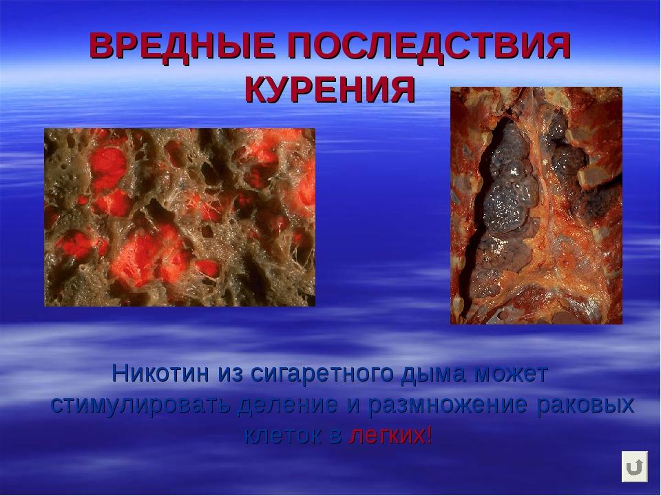 ВРЕДНЫЕ ПОСЛЕДСТВИЯ КУРЕНИЯ Никотин из сигаретного дыма может стимулировать д...