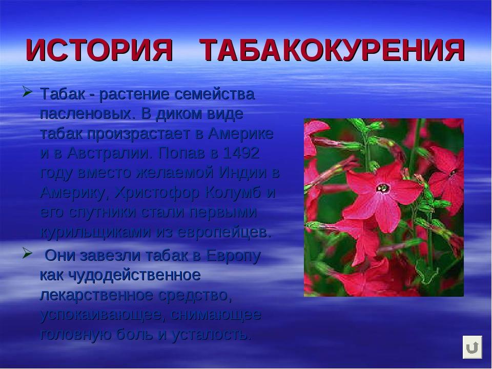 ИСТОРИЯ ТАБАКОКУРЕНИЯ Табак - растение семейства пасленовых. В диком виде таб...