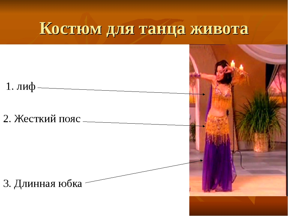 Костюм для танца живота 1. лиф 2. Жесткий пояс 3. Длинная юбка