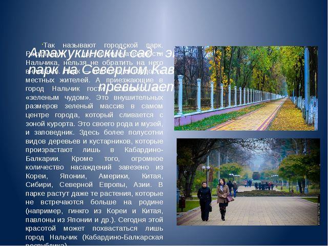 Атажукинский сад - это самый крупный парк на Северном Кавказе. Его площадь п...