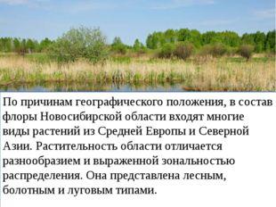 По причинам географического положения, в состав флоры Новосибирской области в