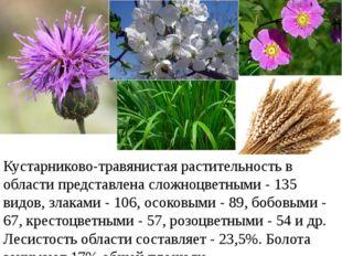 Кустарниково-травянистая растительность в области представлена сложноцветными