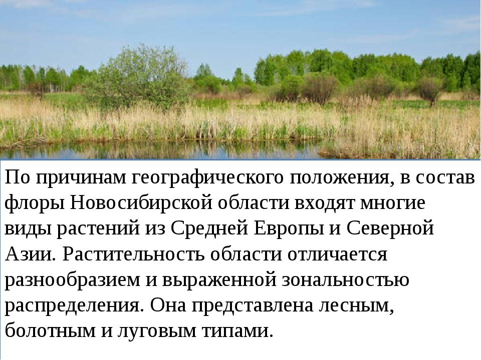 По причинам географического положения, в состав флоры Новосибирской области в...