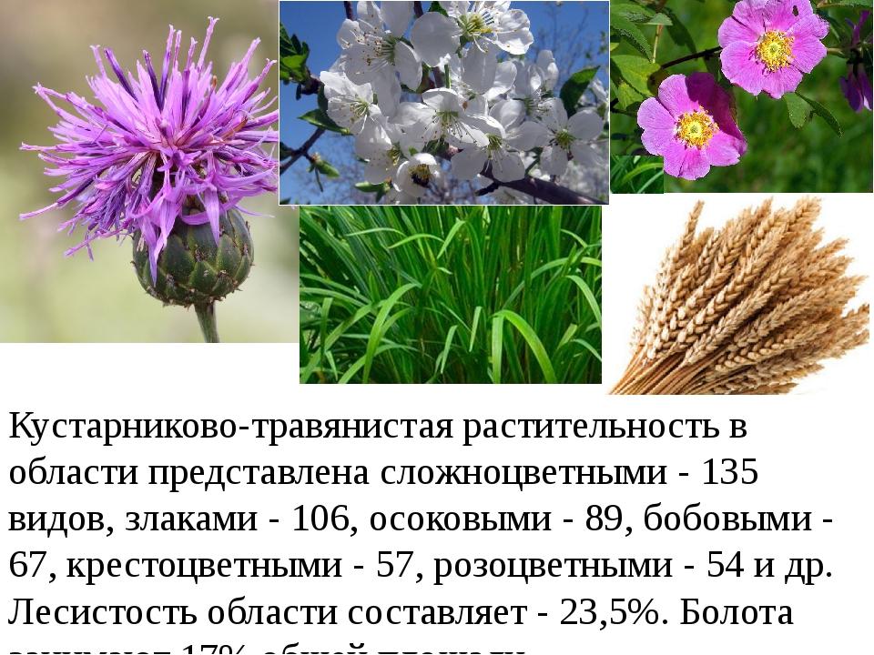 Кустарниково-травянистая растительность в области представлена сложноцветными...