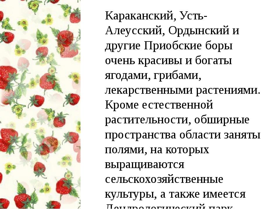 Караканский, Усть-Алеусский, Ордынский и другие Приобские боры очень красивы...