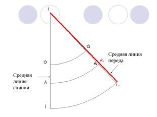 Средняя линия спинки Средняя линия переда