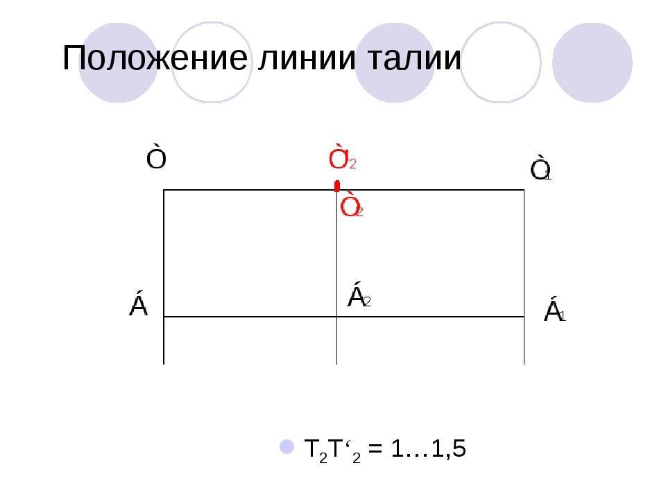 Положение линии талии Т2Т'2 = 1…1,5