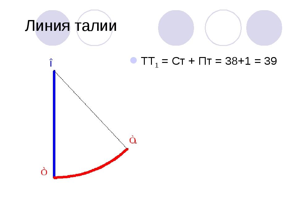 Линия талии ТТ1 = Ст + Пт = 38+1 = 39