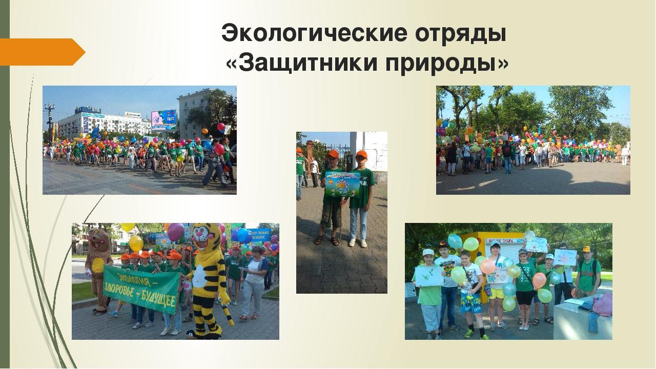 Экологические отряды «Защитники природы»