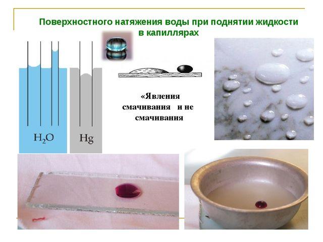 Поверхностного натяжения воды при поднятии жидкости в капиллярах «Явления сма...