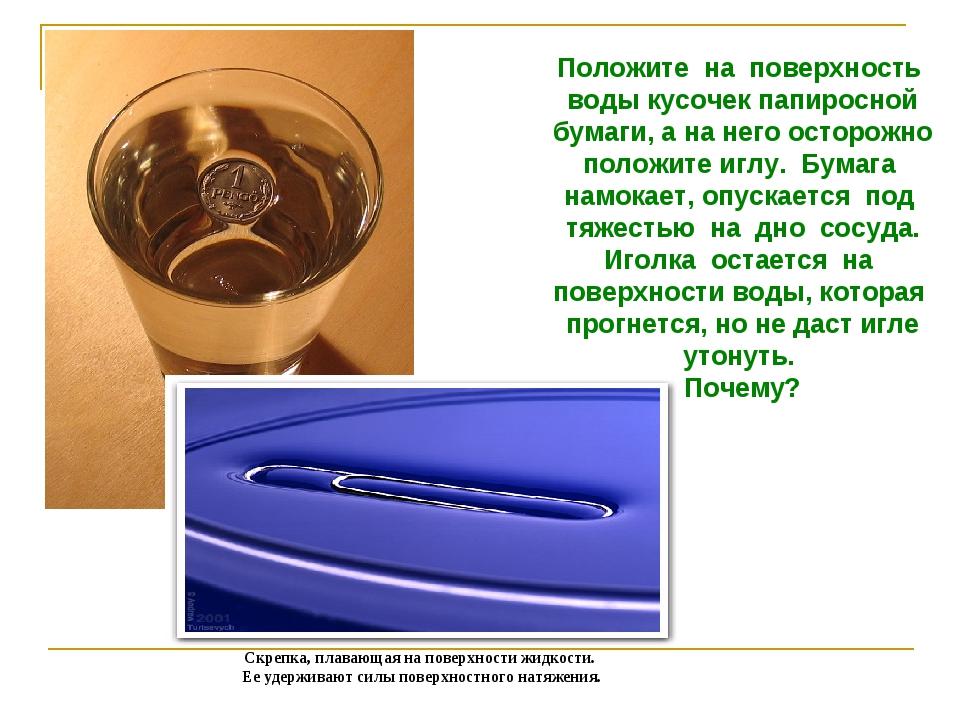 Положите на поверхность воды кусочек папиросной бумаги, а на него осторожно п...