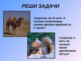 РЕШИ ЗАДАЧИ Скорость до 16 км/ч. А сколько километров может пройти верблюд за