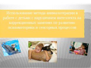 Использование метода анималотерапии в работе с детьми с нарушением интеллекта