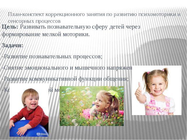 План-конспект коррекционного занятия по развитию психомоторики и сенсорных пр...