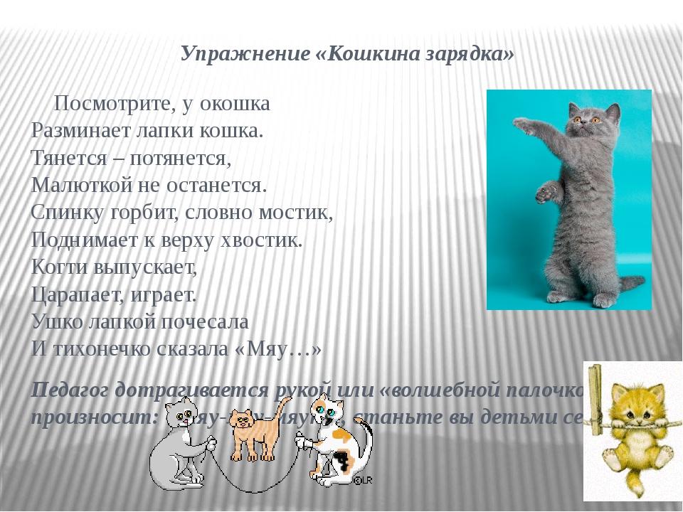 Упражнение «Кошкина зарядка» Посмотрите, у окошка Разминает лапки кошка. Тяне...