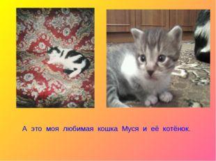 А это моя любимая кошка Муся и её котёнок.