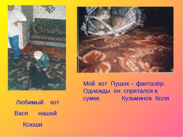 Любимый кот Вася нашей Ксюши Мой кот Пушок – фантазёр. Однажды он спрятался...