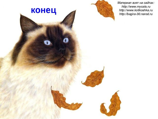 конец Материал взят на сайтах: http://www.mycats.ru http://www.kotikoshka.ru...