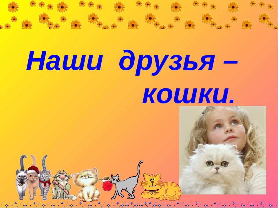 Наши друзья – кошки.
