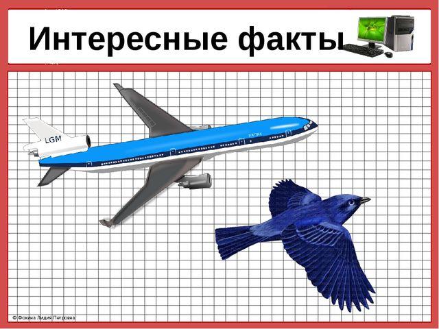Интересные факты © Фокина Лидия Петровна © Фокина Лидия Петровна