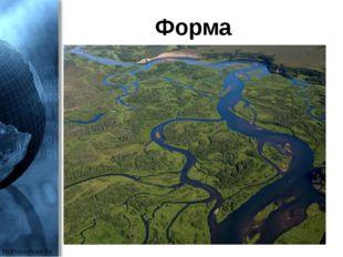 Форма ProPowerPoint.Ru