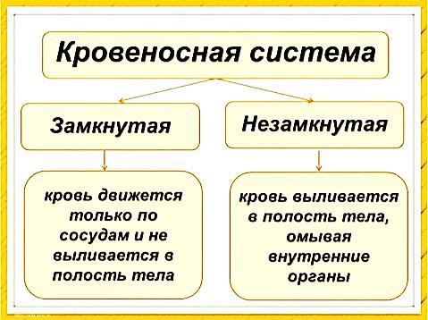 hello_html_m5c669c4.jpg