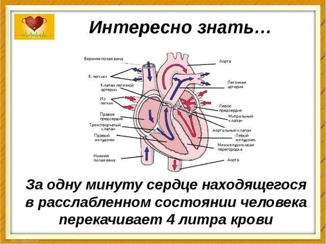 Интересно знать… За одну минуту сердценаходящегося в расслабленном состоянии...