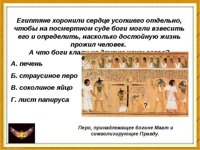 Египтяне хоронили сердце усопшего отдельно, чтобы на посмертном суде боги мог...