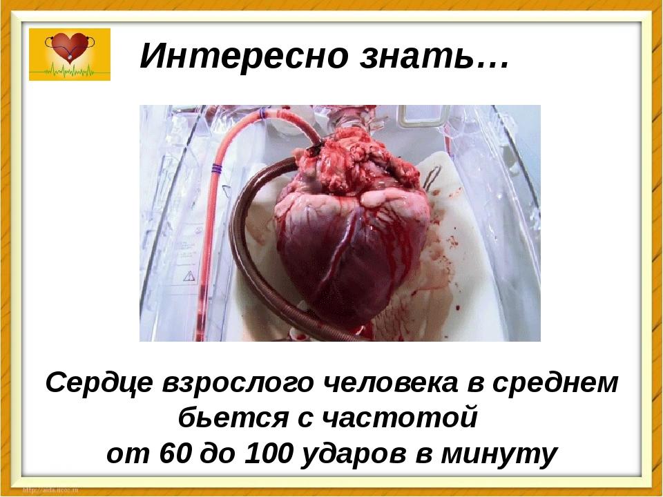 Сердце взрослого человека в среднем бьется с частотой от 60 до 100 ударов в м...